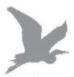 Heron Jader Ltd